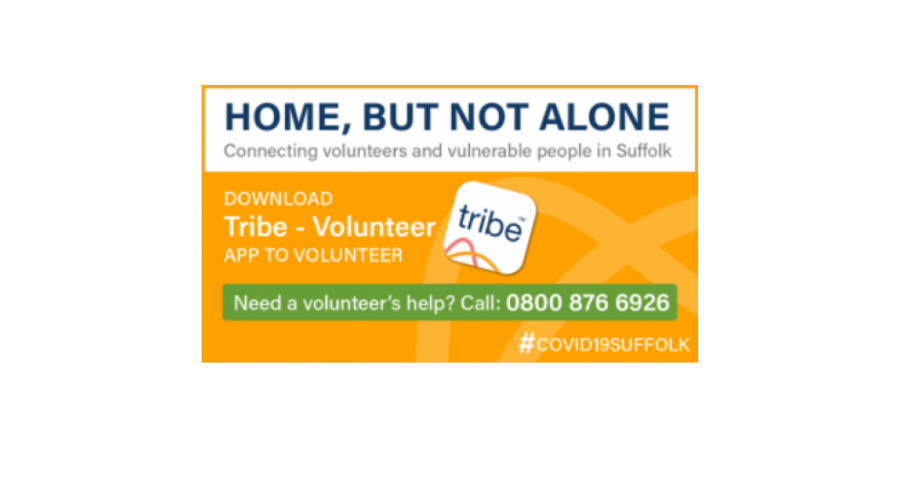 Suffolk key partners collaborate to launch 'Home, but not alone' service