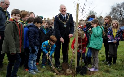 The Suffolk Canopy Fund launches to enhance, preserve and increase Suffolk's green spaces
